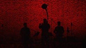 Wardruna perform